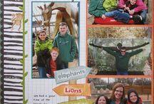 Zoo Layouts