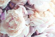 Beautiful / by Yolente Heidenrijk