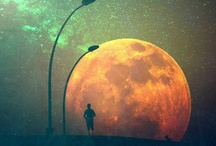 goodnight moon / by Chelsi Rice