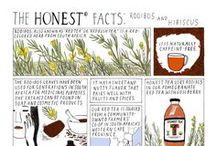 Honest Facts