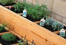 O U T D O O R S T Y L E / gardening and outdoor inspirations