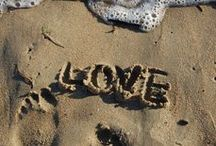 All you need is... / Love  / by Elly Smith