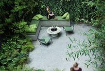 My garden.....one day