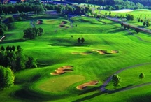 Golf in Illinois / Are you a Player? Come play our courses! We sport four award-winning golf courses, unique accomidations, excellent dinning, beautiful Stonedrift Spa and much more!