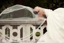 Wedding Photos / by Nicolle Baughman