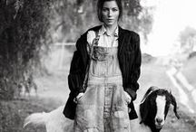 homesteading / by Cammy