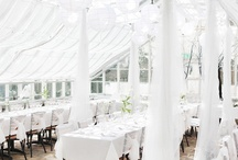 Garden Sunroom, Conservatory & Greenhouse Inspiration / by Maria Silver