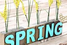 Spring / Spring inspiration board  / by Teresa Schumacher