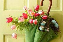 Season-spring / Spring, Easter, St. Patrick's, Mardi Gras, Earth Day.... / by Jenna Kern