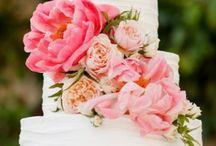 Wedding / by Erica English