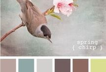 Colors / by MyNeed2Craft by Terri Deavers