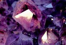 lavish lavender  / by tamara del valle