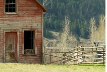 country ♥  / by Juliie