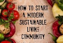 Green Living / Ideas to Create a More Sustainable Future for Our Community.
