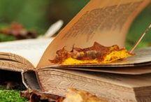 Książki / sztuka czytania