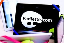 Our Friends / by Padlette for tablets.