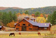 Dream Farm / by Brianna Smith