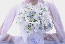 wedding flowers / by Kimberly Fiser