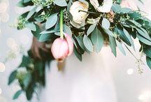 Lovebirds / by Ashlea Blondel