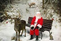 Christmas time  / by Jennifer Adams
