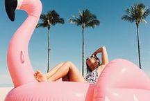 Summer Daze are Holidays