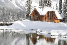 Holiday Scenes / Beautiful winter landscapes & holiday scenes