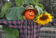ScaReCroW aNd FriENds / Outstanding in Their Fields....