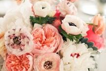 Amazing Florals / by Alison Petok