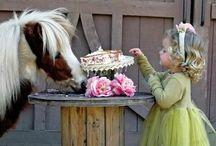 Miniature Horse レ O √ 乇 ♥