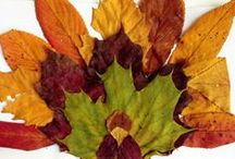 Fall Crafts & Ideas / Crafts for kids with fall or fall holiday themes / by Library Gerbils