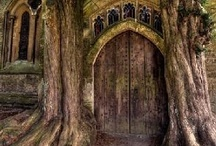 Doors / by Debbie Wright