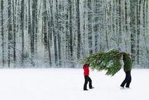 (Holiday) Christmas | New Years / Christmas, Noel, Jul,  December Holidays