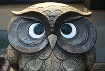 Owls! / Owls