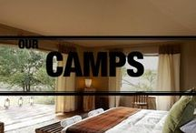 Our Camps / by Asilia Africa