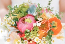 fleurs  / by Rachel Dorfman