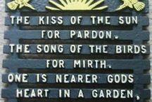 Garden / by Katie