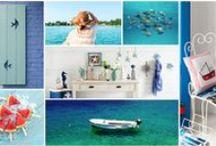 Life of Sea // Denizdeki Yaşam / Summer Season 16