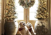 Christmas / by Kim Adcock