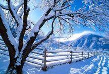 ❄️ Winter Wonderland ❄️ / ❄️⛄️❄️⛄️❄️⛄️❄️