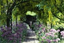 Inspiration - Spaces / Outdoor spaces that inspire us.