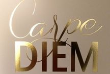 Carpe Diem / Feel the adrenaline in your veins