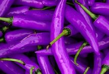 Purple / by Jana Cress Miller