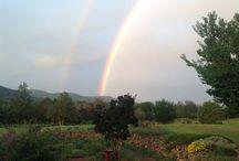 Rio Ruidoso Farms / Info, ideas, recipes and photos from microfarm in Ruidoso Downs, NM