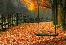 Autumn / by Heureux Pour Tourjours