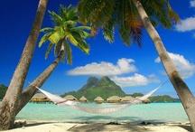 Travel & holiday destination