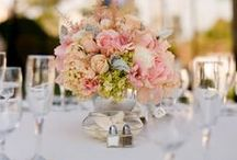 Wedding Ideas / Because I'm a girl, and let's face it, we've all dreamt of our own!!