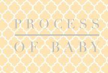 PINK Pregnancy Week By Week