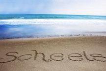 Swimwear & Beachwear / Fun in the Sun