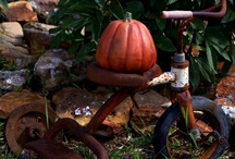 Autumn  / by Penny Wofford Lambert (Miss Penny Whistle Creations)