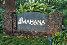 MAHANA RESORT / Luxury Vacation Condos From $265-$415  Mahana is considered one of the finest Maui condo rentals on the entire island, and one of our most requested and most popular Maui properties. The Mahana awaits you, experience it for yourself!